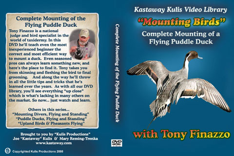 Taxidermy Training DVDs