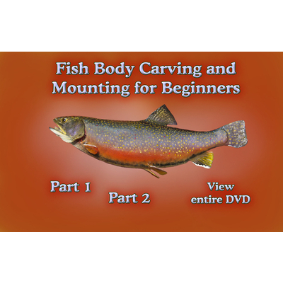 Fish Body Carving & Mounting for First Time Carvers